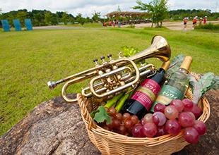 世羅と全国のワインのイメージ
